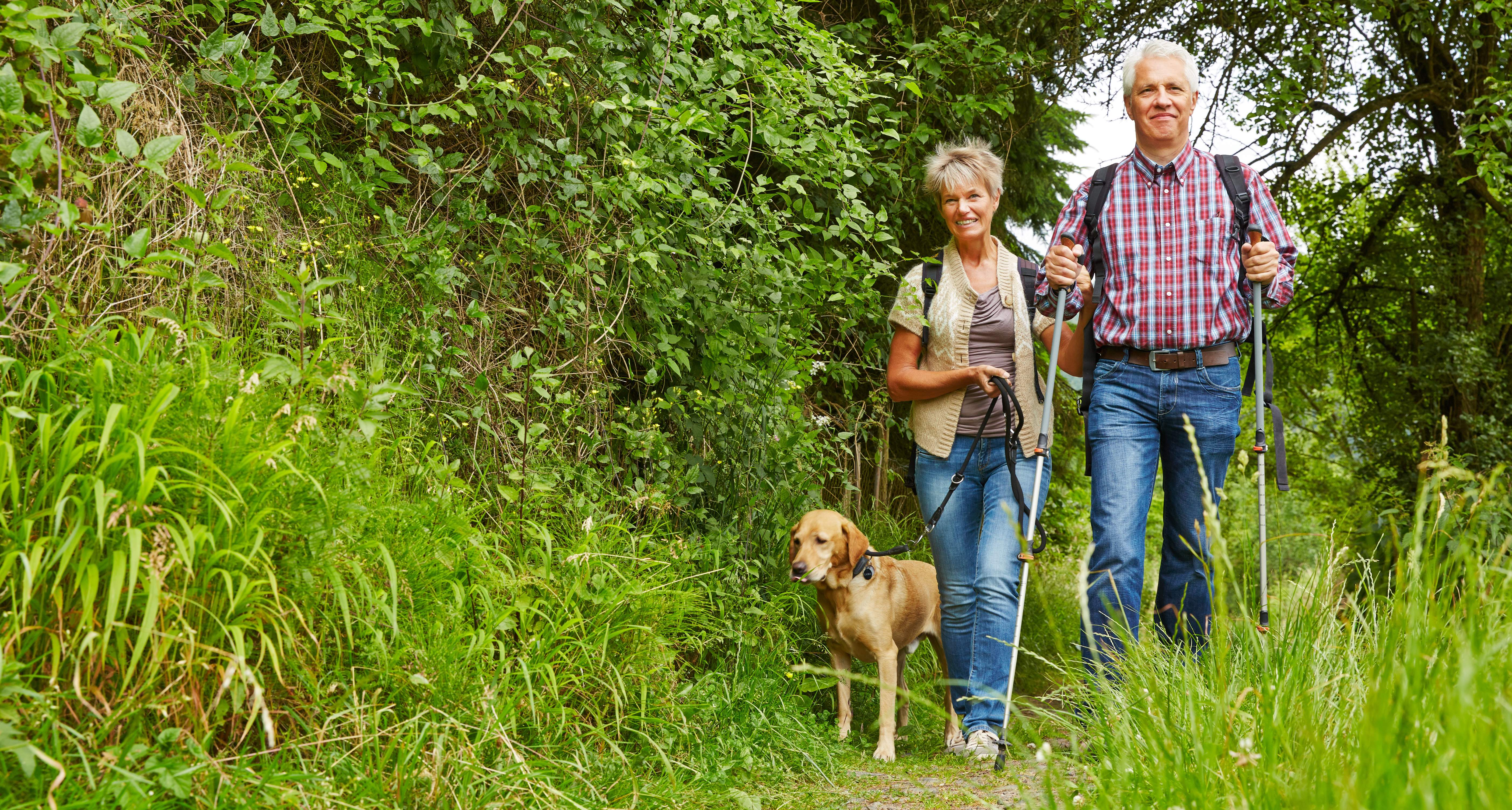Happy senior couple walking with dog on a hiking trail in nature